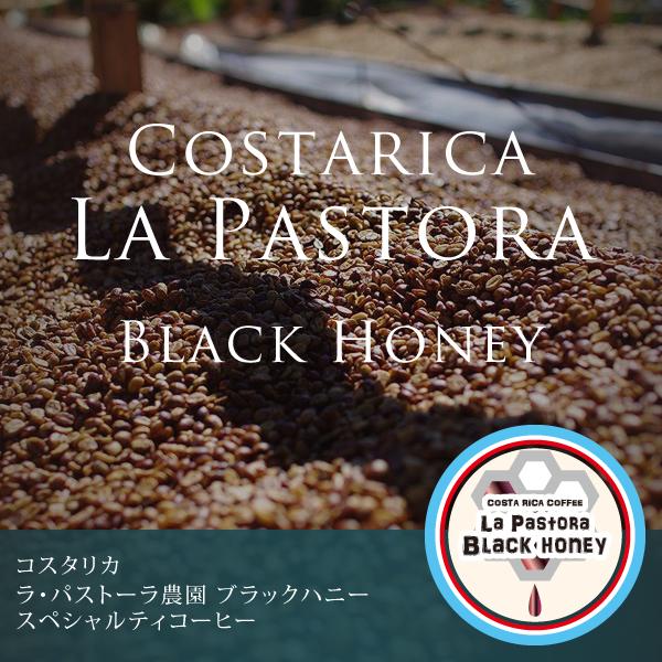 コスタリカ ラ・パストーラ農園 ブラックハニースペシャルティコーヒー