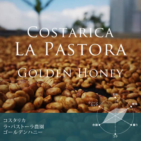 コスタリカ ラ・パストーラ農園 ゴールデンハニースペシャルティコーヒー