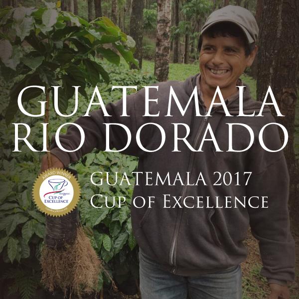 グアテマラ リオ・ドラド農園 カップ・オブ・エクセレンス 2017 サムネイル